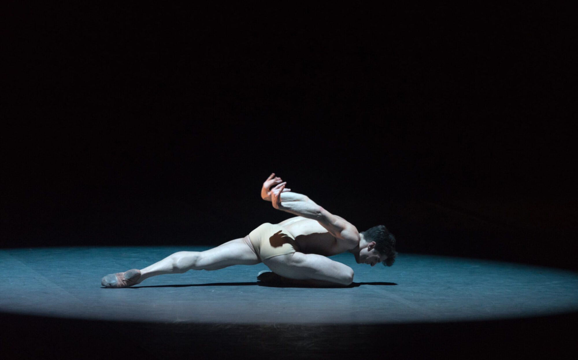 The Swan Sergio Bernal, photo: Marc Haegeman